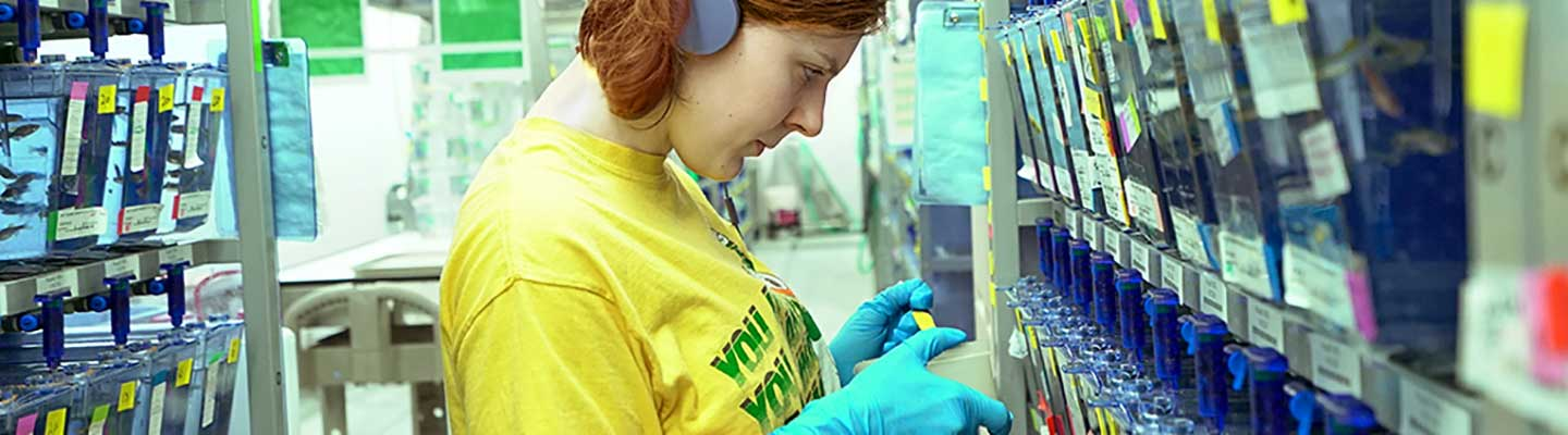 Woman working in the zebrafish lab